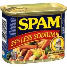 SPAM 12OZ LOW SALT MEAT