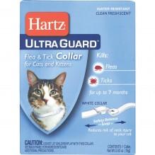 HARTZ 2/1 FL&TIC CLR CAT WHITE